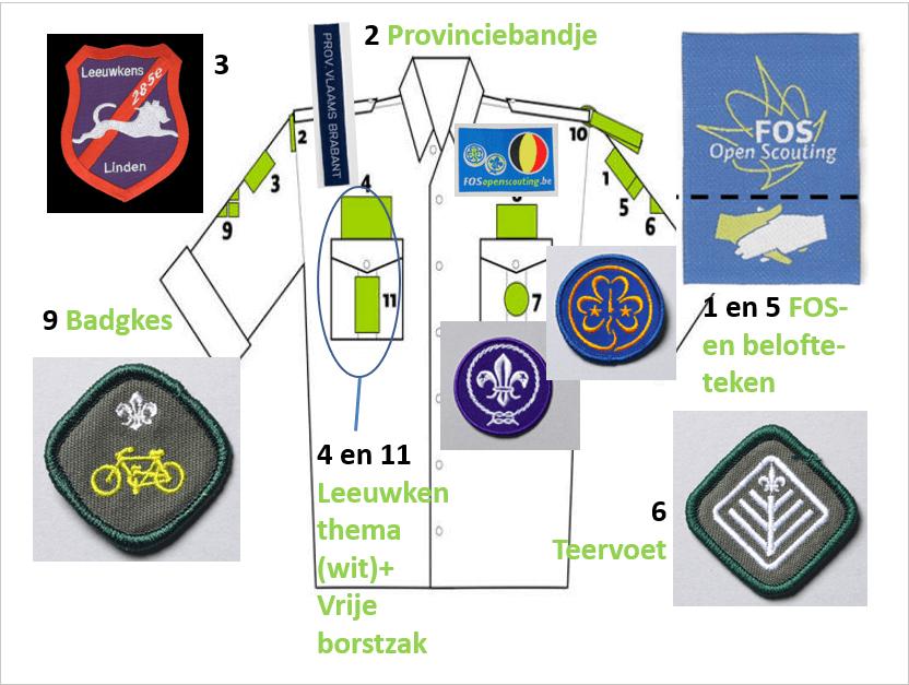 Hemd + alle badgkes Image