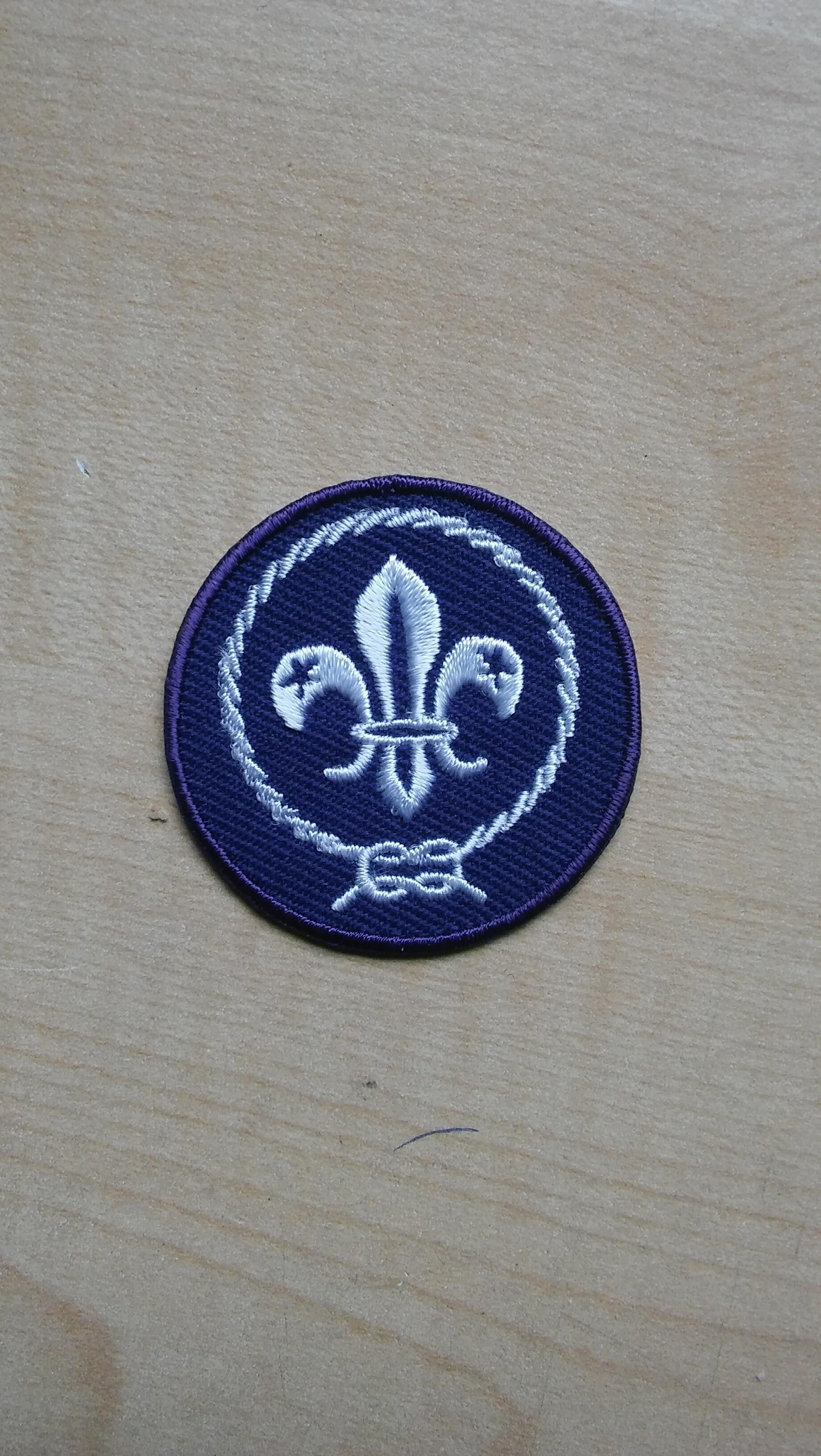 Kenteken scouts/gidsen Image